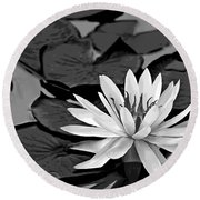 Water Lily Black And White Round Beach Towel