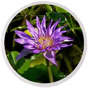 Water Lily Bloom Round Beach Towel