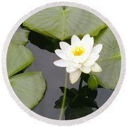 Water Lily I I Round Beach Towel