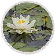 Water Lily Pictures 45 Round Beach Towel
