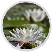 Water Lily Pictures 70 Round Beach Towel