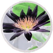 Water Lily - Purple Power - Photopower 1377 Round Beach Towel