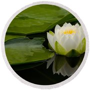 Water Lily Reflection II Round Beach Towel