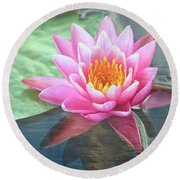 Water Lily Round Beach Towel by Sandi OReilly