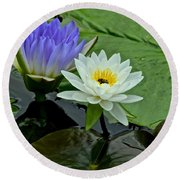 Water Lily Serenity Round Beach Towel