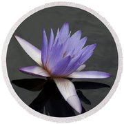 Water Lily Teri Dunn Round Beach Towel