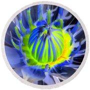 Water Lily - The Awakening - Photopower 03 Round Beach Towel
