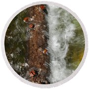 Water Logged Round Beach Towel