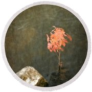 Water Maple Round Beach Towel by Michelle Calkins