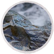 Water Mountain 2 By Jrr Round Beach Towel