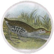 Water Rail Round Beach Towel