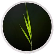 Water Reed Abstract Round Beach Towel