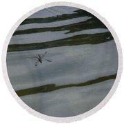 Water Skipper In Digital Oil Pastel Round Beach Towel