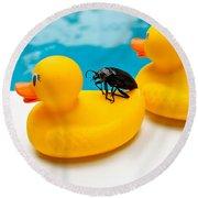 Waterbug Takes Yellow Taxi Round Beach Towel