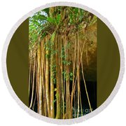 Waterfall Of Jungle Tree Roots Round Beach Towel