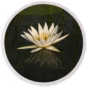 Waterlilly 5 Round Beach Towel