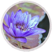Waterlily And Bee Round Beach Towel