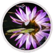 Waterlily And Dragonfly Round Beach Towel