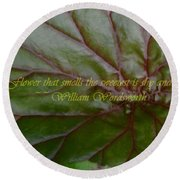 Waterlily Leaf Macro Round Beach Towel