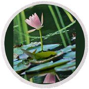Waterlily Whimsy Round Beach Towel