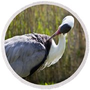 Wattled Crane Round Beach Towel
