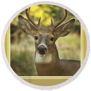 Way To Go Dad Congratulations On A Successful Deer Hunt Round Beach Towel