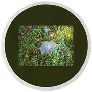 Web In Moss Round Beach Towel