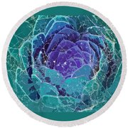 Webbed Succulent In Teal Tones Round Beach Towel