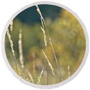 Weeds And Bokeh Round Beach Towel