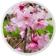 Weeping Cherry Blossoms Round Beach Towel