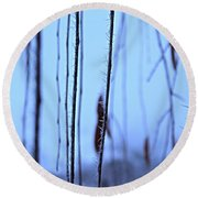 Weeping Forest Frost Round Beach Towel