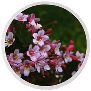 Weigela Branch Round Beach Towel