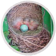 Welcome To The World - Hatching Baby Robin Round Beach Towel