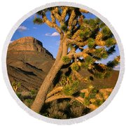 West Grand Canyon Round Beach Towel