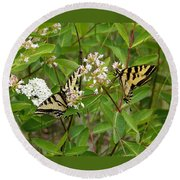 Western Tiger Swallowtail Butterflies Round Beach Towel