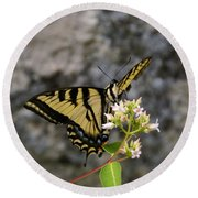 Western Tiger Swallowtail Butterfly 2 Round Beach Towel