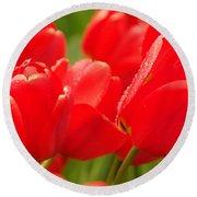 Wet Tulips Round Beach Towel