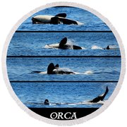 Whale Of A Time Round Beach Towel