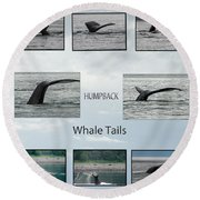 Whale Tails Round Beach Towel