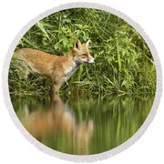 What Does The Fox See Round Beach Towel