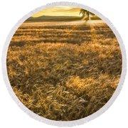Wheat Fields Of Switzerland Round Beach Towel