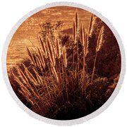 Wheat Grass Round Beach Towel