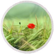 Wheatfield Poppy Round Beach Towel