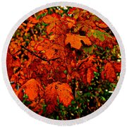 Where Has All The Red Gone - Autumn Leaves - Orange Round Beach Towel