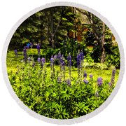 Where The Lupines Grow Round Beach Towel