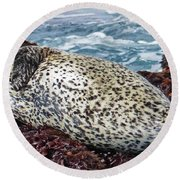 Whiskers And Spots Round Beach Towel