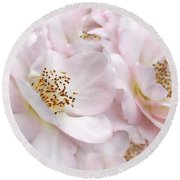 Whispers Of Pink Roses Round Beach Towel
