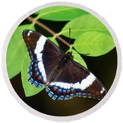 White Admiral Butterfly Round Beach Towel