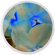 White And Blue Orchid Round Beach Towel
