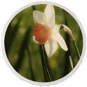 White And Orange Daffodil Round Beach Towel